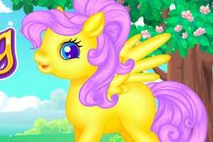 Pony Bakım Merkezi
